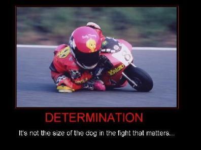 determination-4198