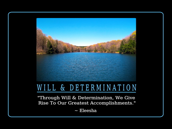WillDetermination